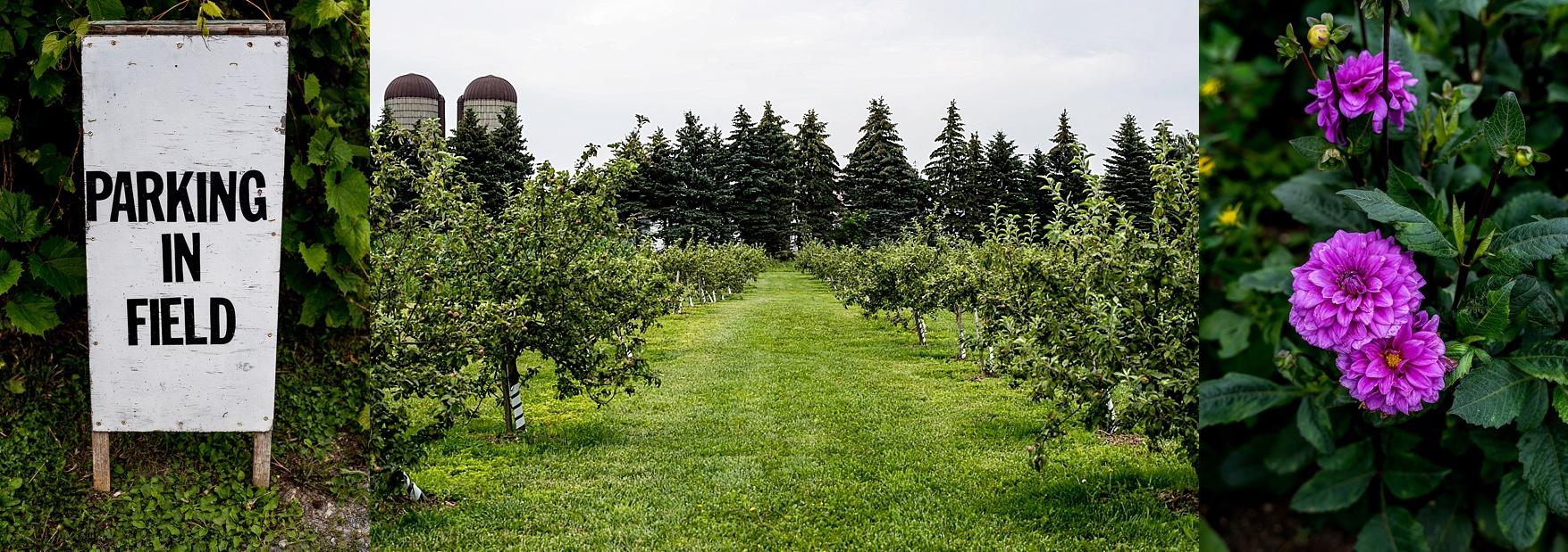 Fields on West Lake Prince Edward County